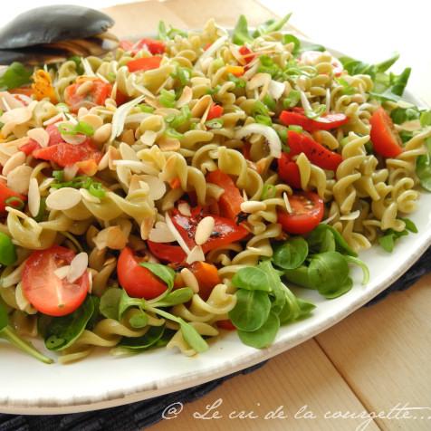 Salade de p tes aux l gumineuses poivrons grill s et for Entrees froides faciles