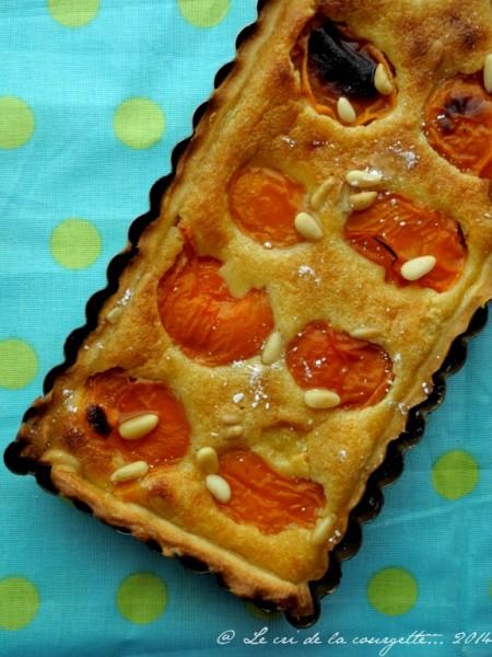 Tarte abricot pi-_01