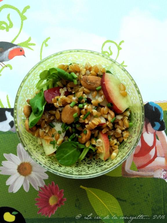 Salade petit épeautre, nectarine, amande